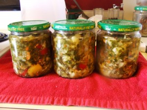 Fermented Foods 001