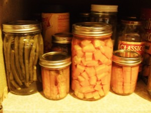 Pickled Carrots, beans and Cucumbers